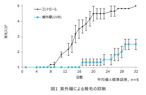 紫外線による頭皮への影響のグラフ